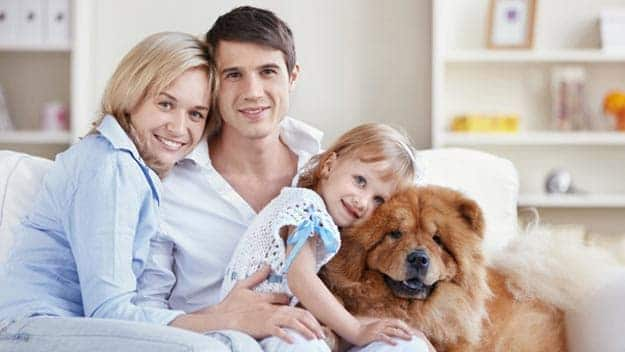 Wills & Trusts dog-young-family Direct Wills Hale